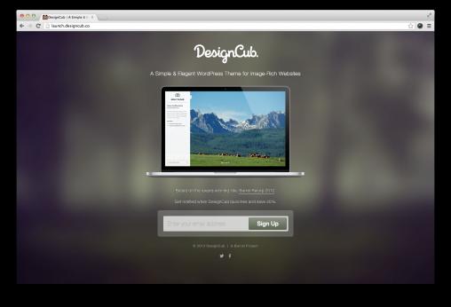 DesignCub Portfolio